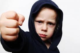دانلود مقاله کارگاه کنترل خشم