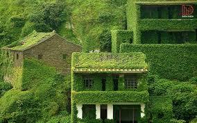 پاو وینت بررسی زیبایی از منظر معماری